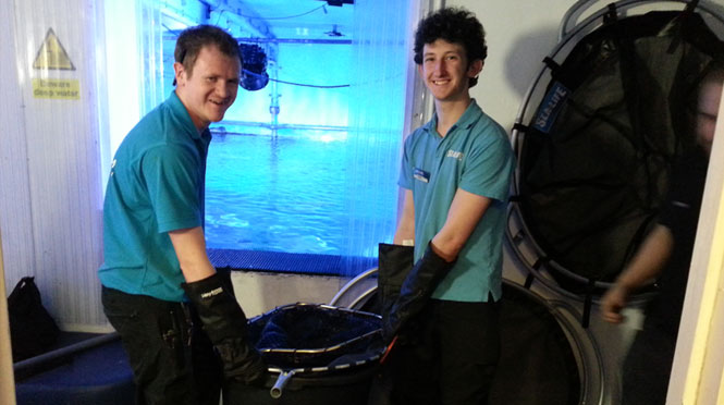 Specialised Rubber Landing Nets at Sealife Birmingham