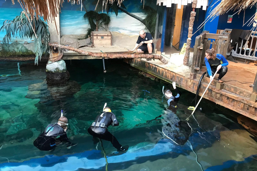 Oceanarium Bournemouth uses our products to prepare for the big refurbishment