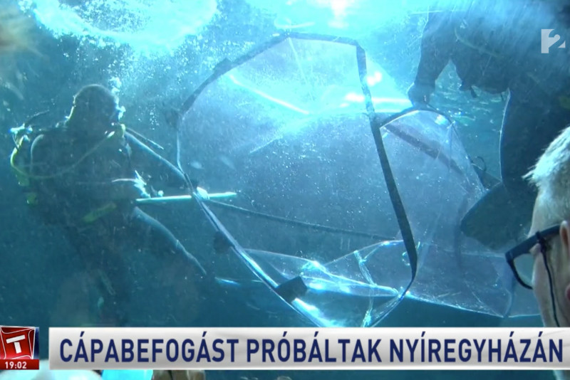 The TAV Shark Bag on National Hungarian News