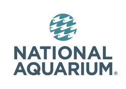 Shawn Fauth - Aquarist @ National Aquarium, Baltimore