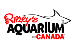 Leah Neal (Director of Husbandry - Ripley's Aquarium of Canada)